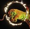 Цирки в Дзержинском